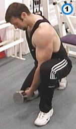fitness-oefening kneeling concentration curls-1