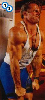 fitness-oefening pressdown-1